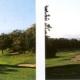 ゴルフどきのサングラスと太陽光の関係。