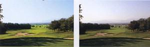 ゴルフ場で適したサングラスは、偏光機能をもったゴルフ用偏光サングラスをご提案。