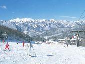 スキー用メガネ度つき、スポーツゴーグル度付きのご紹介専門店