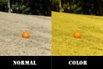射撃には天候、時間などによってサングラスのレンズカラーを選ぶ事が大切です。