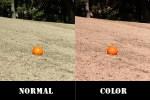 度付きサングラス選びは、天候や場所などによってレンズカラーを選ぶ事が大切です。