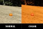 度つきサングラス選びは、天候や場所などによってレンズカラーを選ぶ事が大切です。