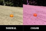 射撃用の度つきサングラス選びは、天候や場所などによってレンズカラーを選ぶ事が大切です。
