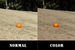度入りの射撃用サングラス選びは、天候や時間などによってレンズカラーを選ぶ事が大切です。