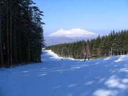 スキーどきに欠かせないサングラス選びはスポーツ用サングラス専門店で選ぶ