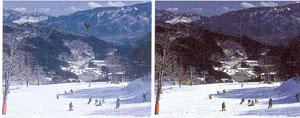 スノーゴーグルのスキー、スノーボードどきのレンズは偏光レンズ仕様をお奨めします。