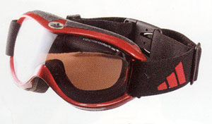 紫外線、青色光などの雪上での眼に対する保護にスノーゴーグルを装用することが大切。