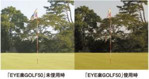 ゴルフ用度付きサングラスは、芝のラインがハッキリする偏光レンズがお奨めです。