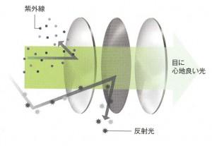 偏光レンズは、高性能の偏光フィルターを仕様した偏光サングラスを選ぶことが大切。