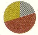 偏光レンズのカラー選びは天候や時間などによって選ぶことが大切。