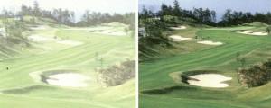 ゴルフときに適したサングラス選びは、偏光サングラスをお奨めいたします。