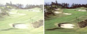 ゴルフどきのグリーンからの照り返しが消える偏光サングラスをお奨めいたします。