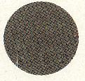 偏光フィルターは目に有害な雑光と紫外線をしっかりカットする快適なレンズです。