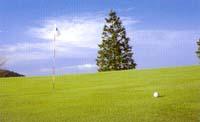 ハイカーブサングラス度付きゴルフ用のご提案